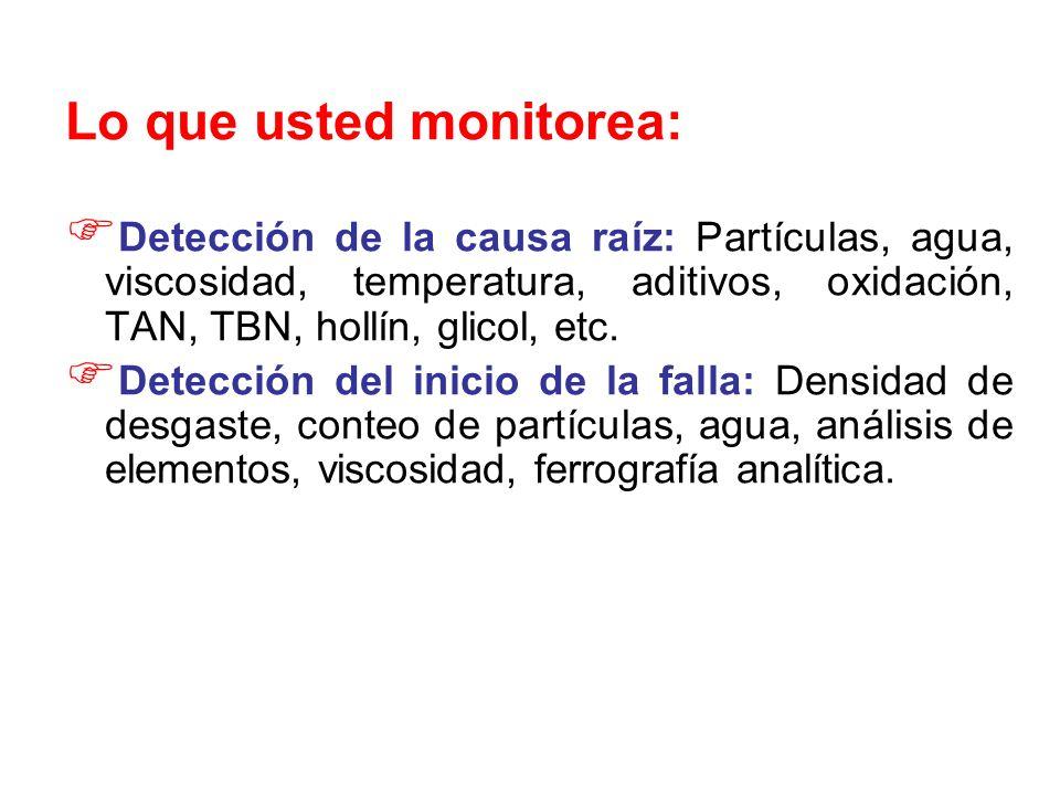 Lo que usted monitorea: