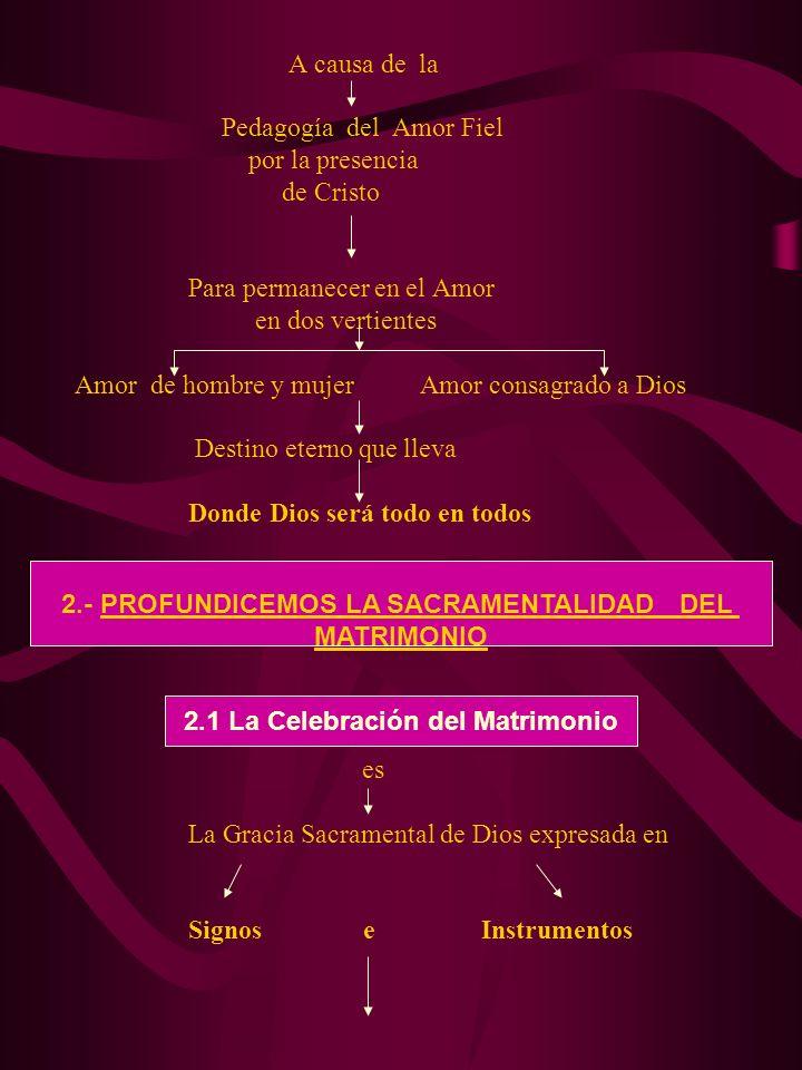 2.- PROFUNDICEMOS LA SACRAMENTALIDAD DEL MATRIMONIO