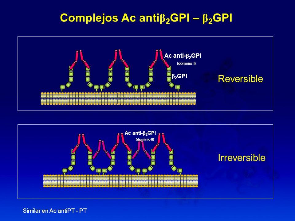 Complejos Ac antiβ2GPI – β2GPI