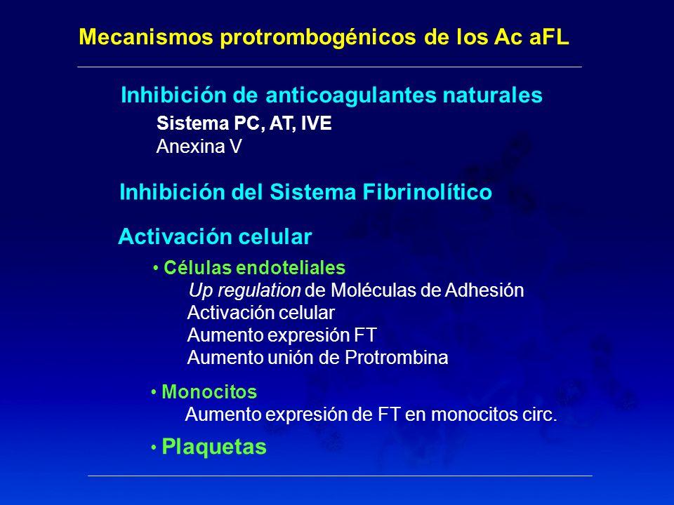 Mecanismos protrombogénicos de los Ac aFL
