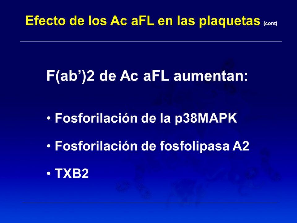 F(ab')2 de Ac aFL aumentan: