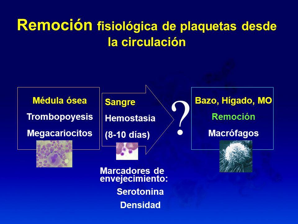 Remoción fisiológica de plaquetas desde la circulación