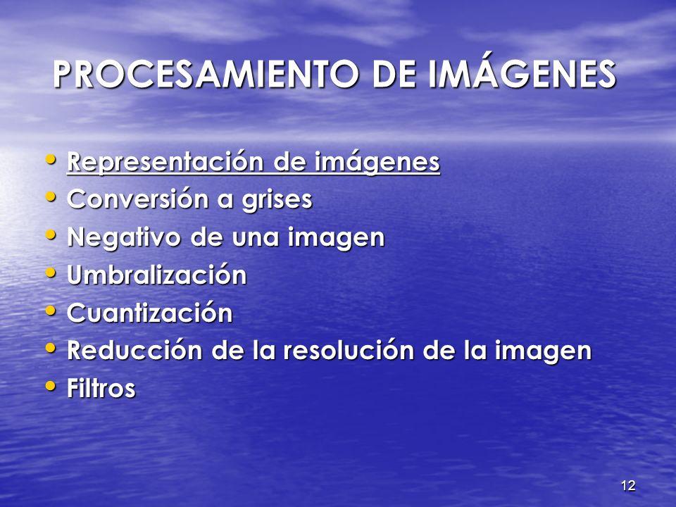 PROCESAMIENTO DE IMÁGENES