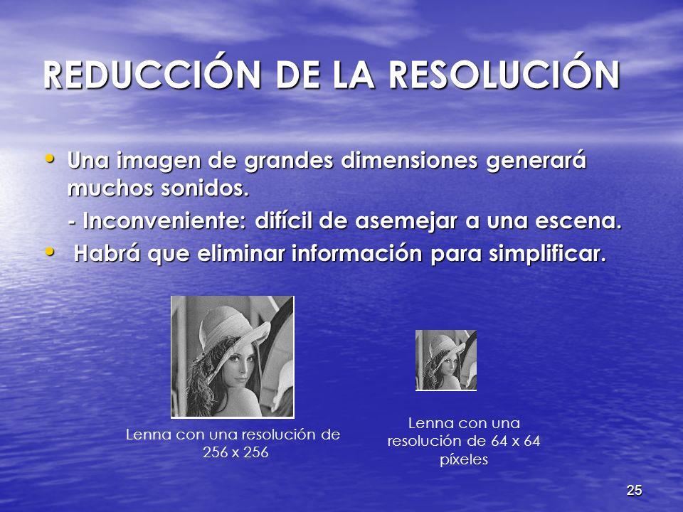REDUCCIÓN DE LA RESOLUCIÓN