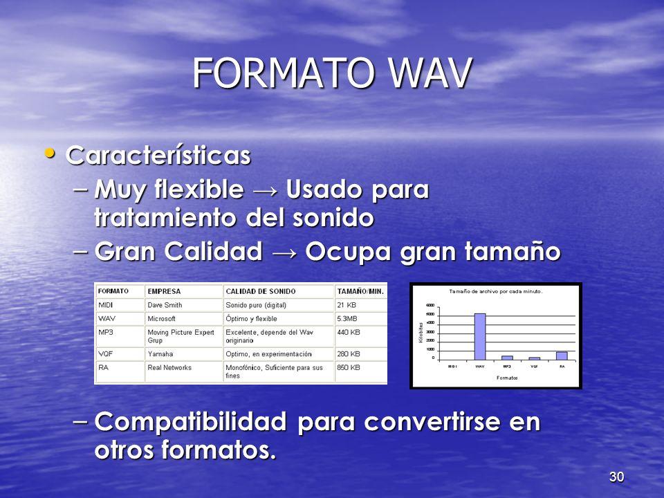 FORMATO WAV Características