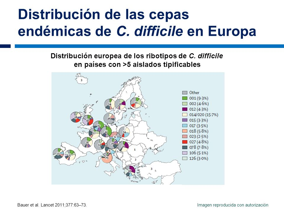 Distribución de las cepas endémicas de C. difficile en Europa