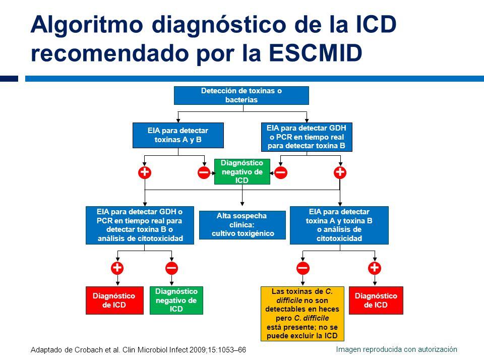 Algoritmo diagnóstico de la ICD recomendado por la ESCMID