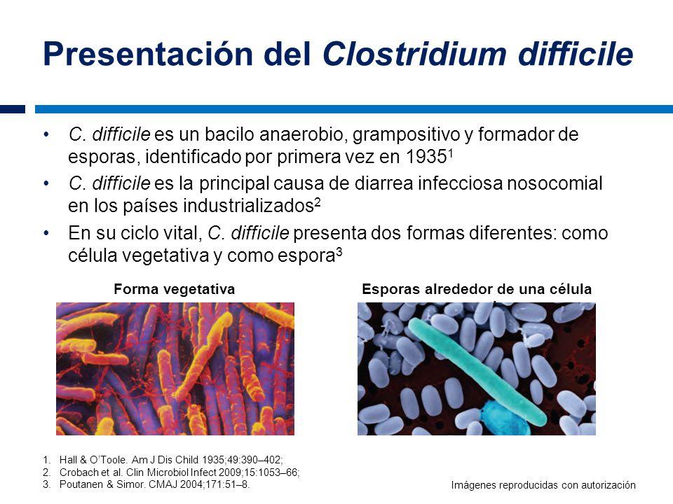 Presentación del Clostridium difficile