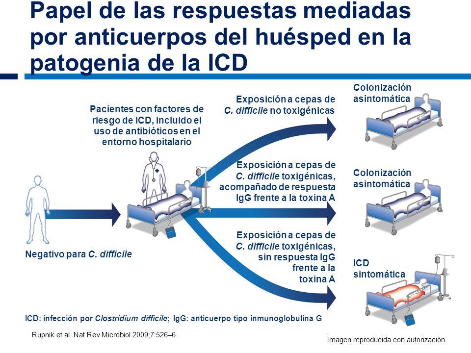 Papel de las respuestas mediadas por anticuerpos del huésped en la patogenia de la ICD