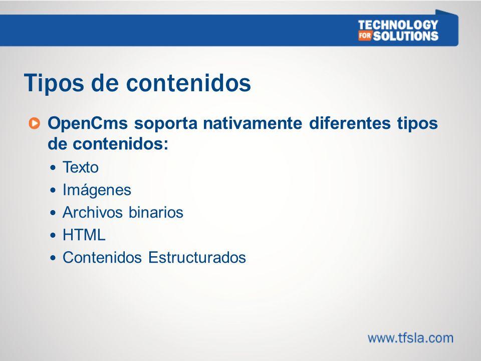 1313 Tipos de contenidos. OpenCms soporta nativamente diferentes tipos de contenidos: Texto. Imágenes.