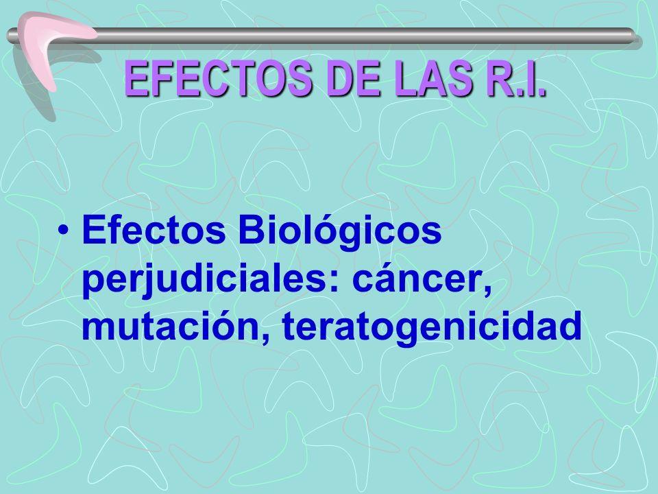 EFECTOS DE LAS R.I. Efectos Biológicos perjudiciales: cáncer, mutación, teratogenicidad