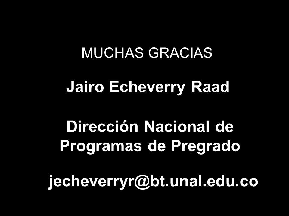 Dirección Nacional de Programas de Pregrado