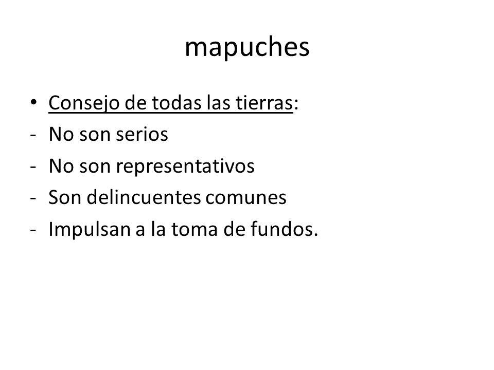 mapuches Consejo de todas las tierras: No son serios