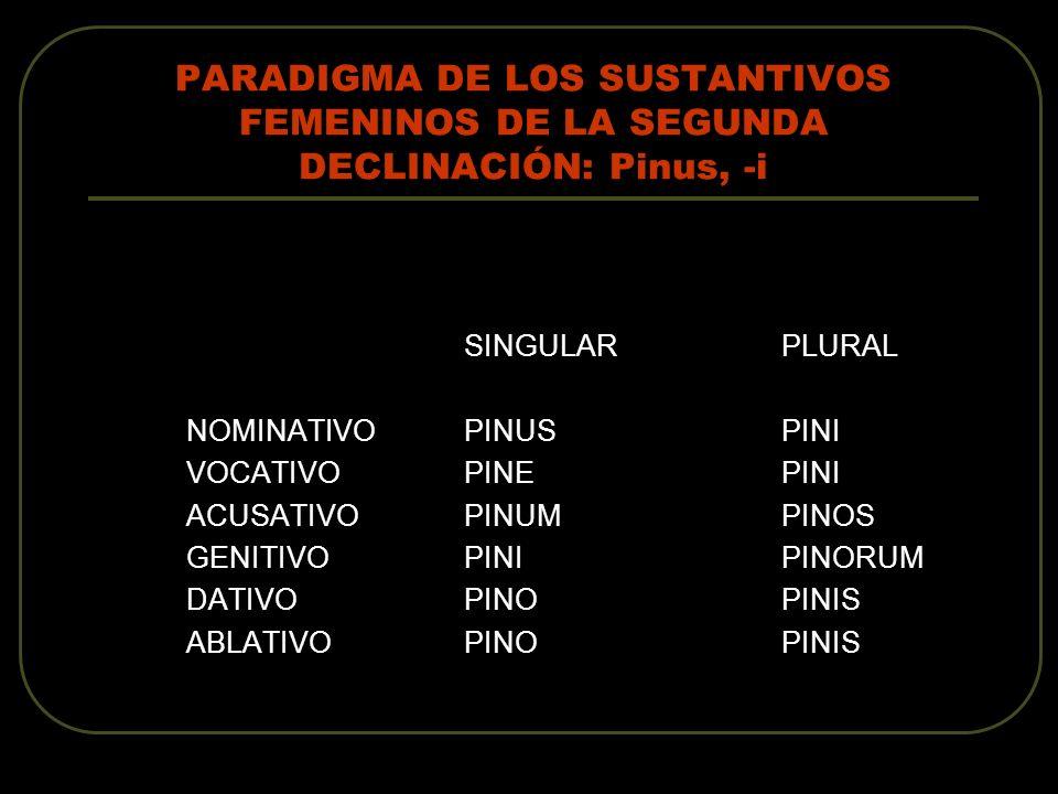 PARADIGMA DE LOS SUSTANTIVOS FEMENINOS DE LA SEGUNDA DECLINACIÓN: Pinus, -i