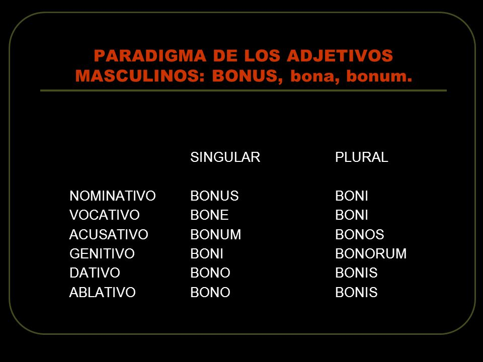 PARADIGMA DE LOS ADJETIVOS MASCULINOS: BONUS, bona, bonum.