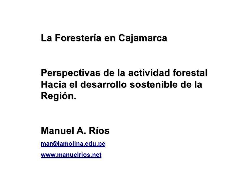 La Forestería en Cajamarca