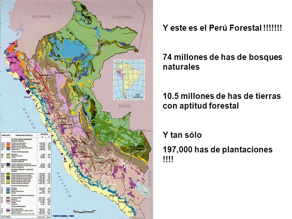 Y este es el Perú Forestal !!!!!!!