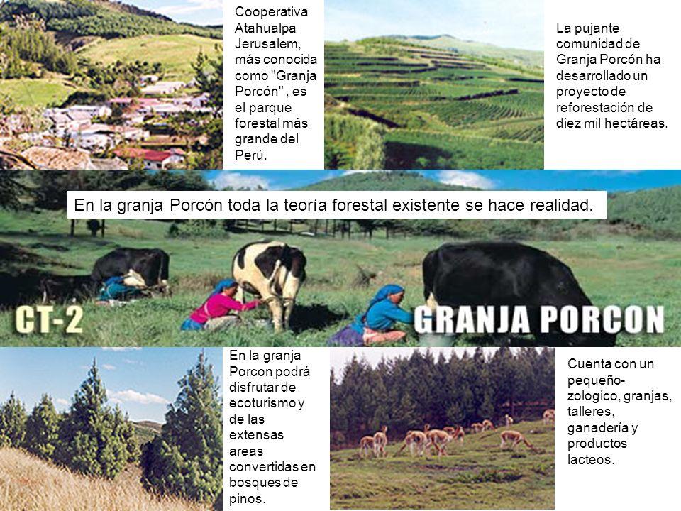 Cooperativa Atahualpa Jerusalem, más conocida como Granja Porcón , es el parque forestal más grande del Perú.