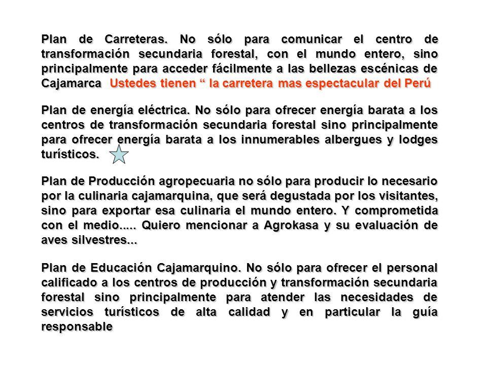 Plan de Carreteras. No sólo para comunicar el centro de transformación secundaria forestal, con el mundo entero, sino principalmente para acceder fácilmente a las bellezas escénicas de Cajamarca Ustedes tienen la carretera mas espectacular del Perú