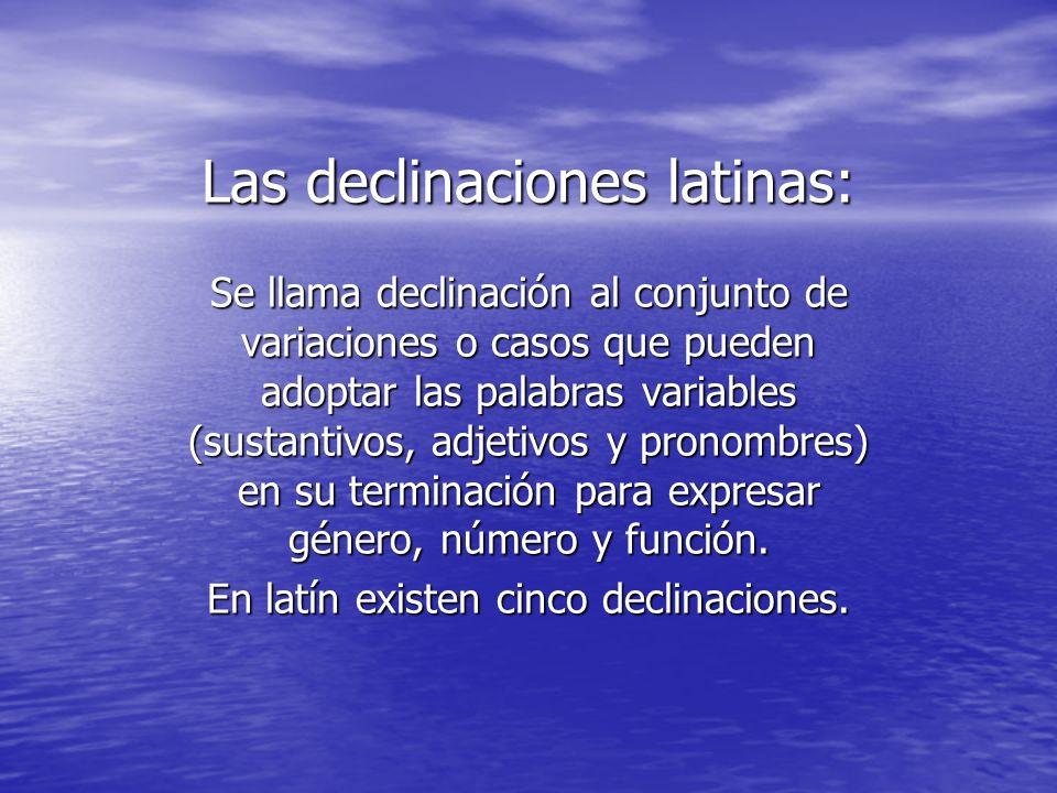 Las declinaciones latinas: