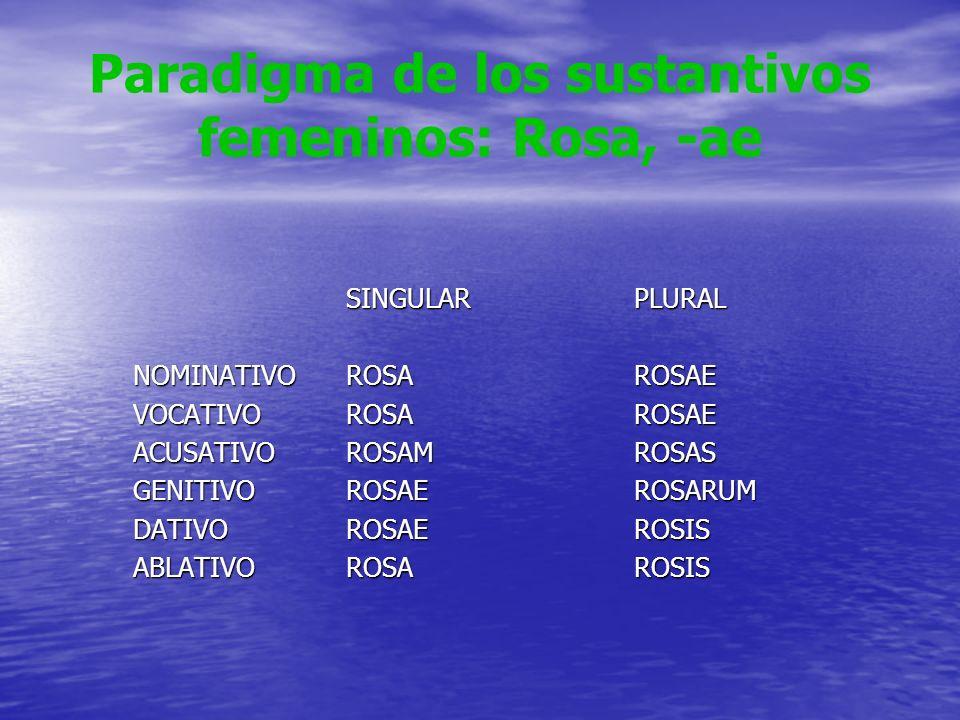 Paradigma de los sustantivos femeninos: Rosa, -ae