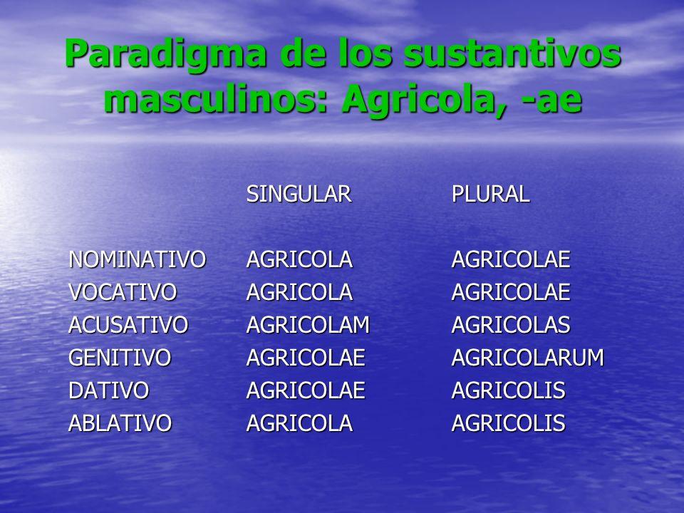 Paradigma de los sustantivos masculinos: Agricola, -ae