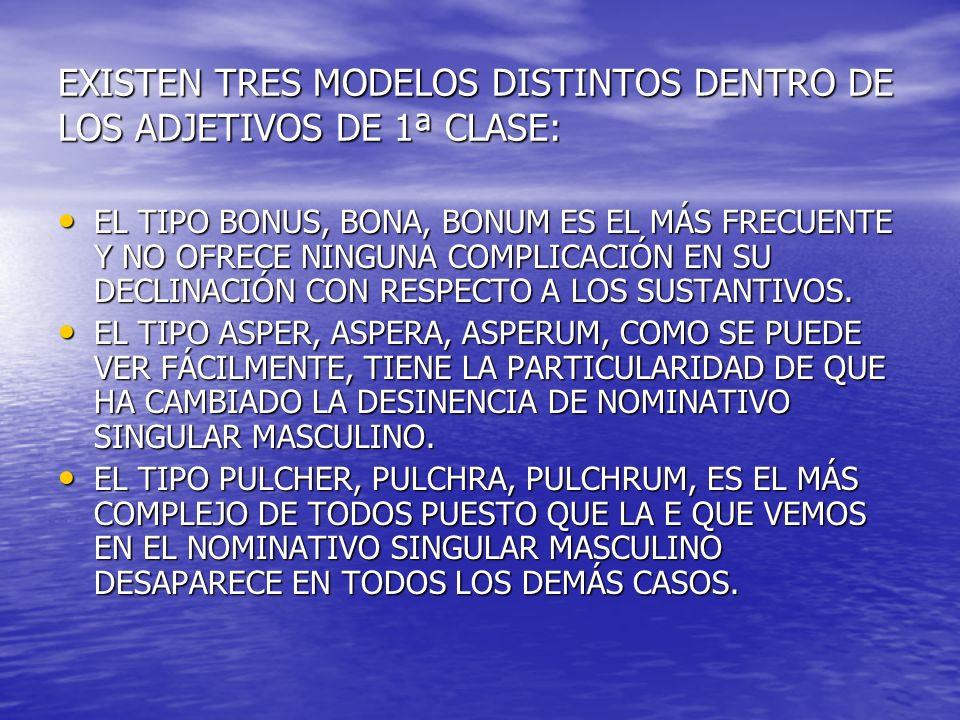 EXISTEN TRES MODELOS DISTINTOS DENTRO DE LOS ADJETIVOS DE 1ª CLASE: