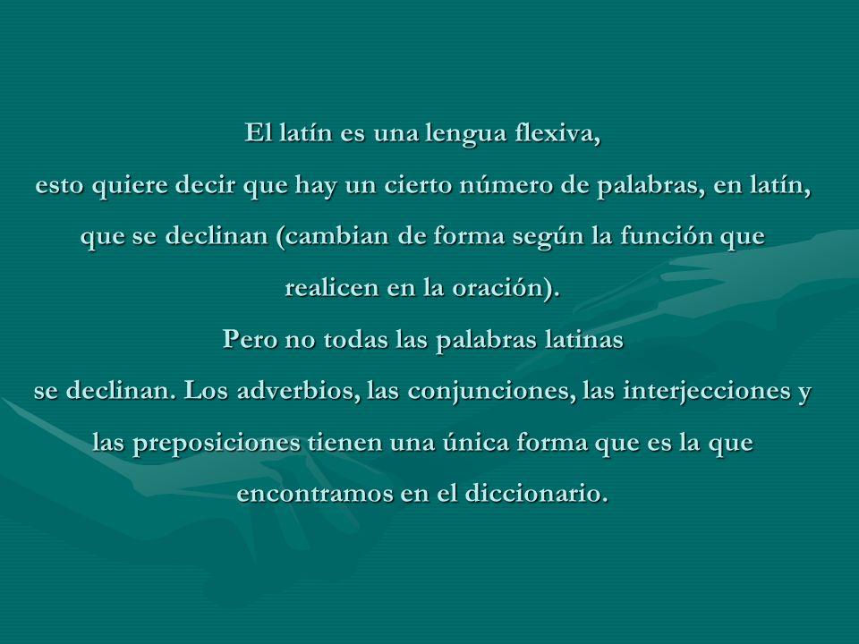 El latín es una lengua flexiva, esto quiere decir que hay un cierto número de palabras, en latín, que se declinan (cambian de forma según la función que realicen en la oración).