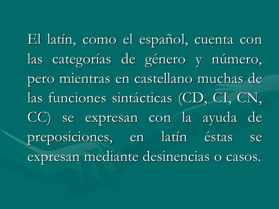 El latín, como el español, cuenta con las categorías de género y número, pero mientras en castellano muchas de las funciones sintácticas (CD, CI, CN, CC) se expresan con la ayuda de preposiciones, en latín éstas se expresan mediante desinencias o casos.
