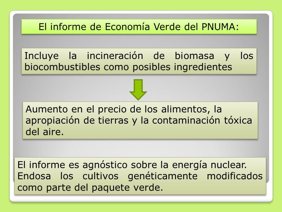 El informe de Economía Verde del PNUMA: