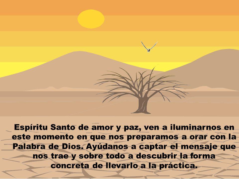 Espíritu Santo de amor y paz, ven a iluminarnos en este momento en que nos preparamos a orar con la Palabra de Dios.