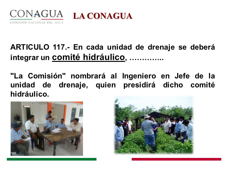 LA CONAGUA ARTICULO 117.- En cada unidad de drenaje se deberá integrar un comité hidráulico, …………..