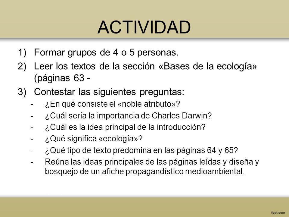 ACTIVIDAD Formar grupos de 4 o 5 personas.
