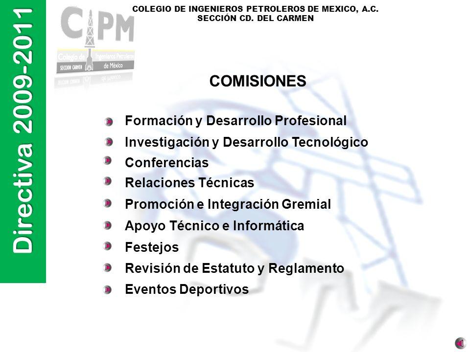 COMISIONES Formación y Desarrollo Profesional