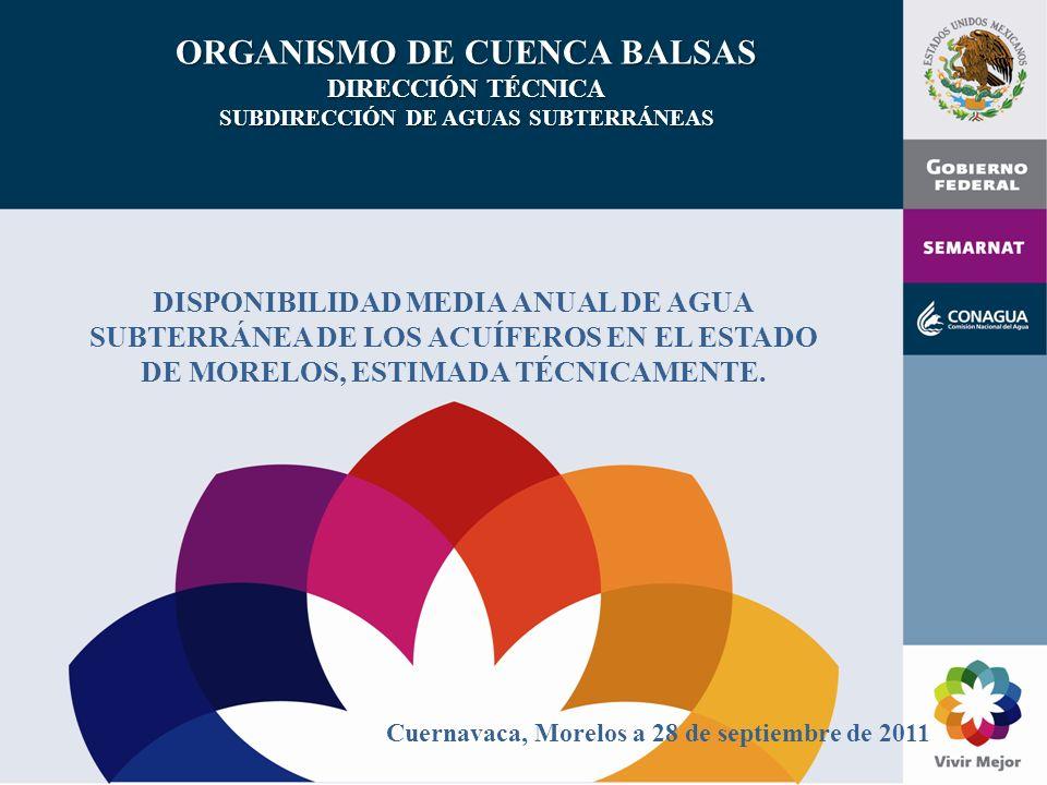 ORGANISMO DE CUENCA BALSAS