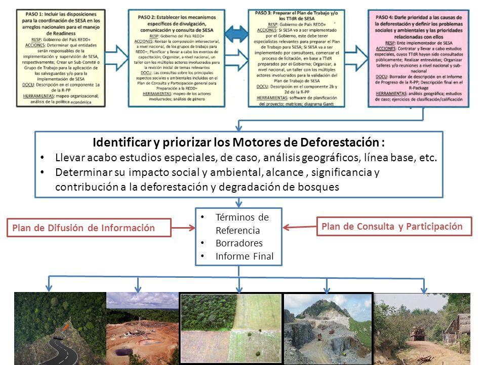Identificar y priorizar los Motores de Deforestación :