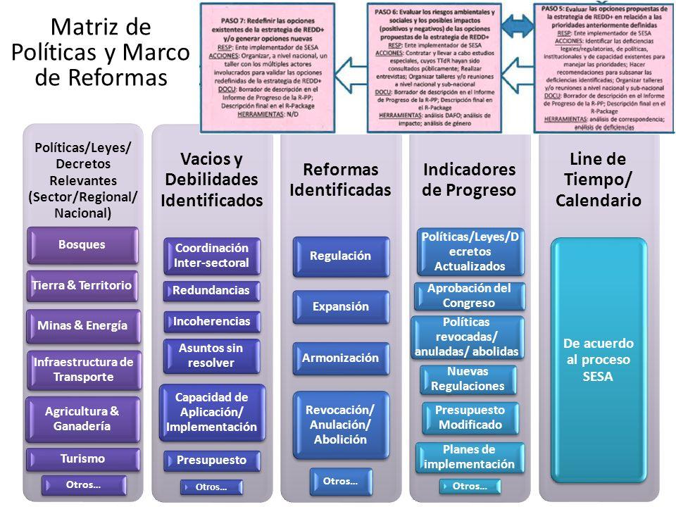 Matriz de Políticas y Marco de Reformas