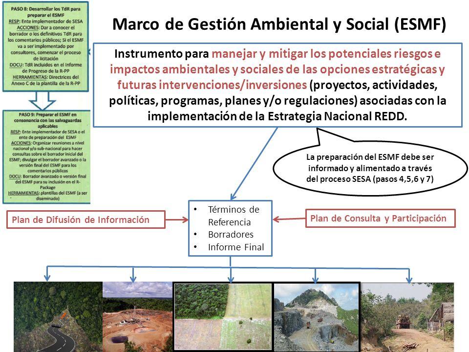 Marco de Gestión Ambiental y Social (ESMF)