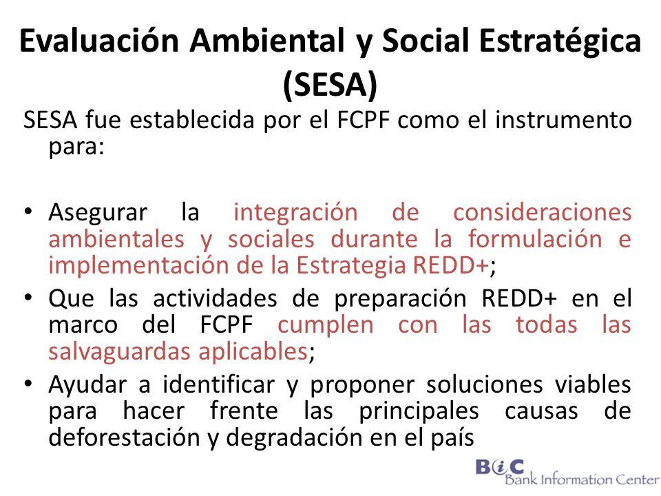 Evaluación Ambiental y Social Estratégica (SESA)