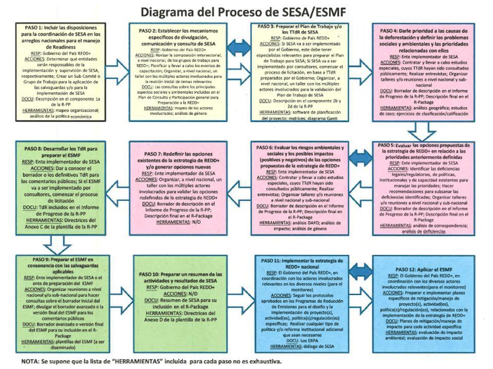 Flujo del Proceso SESA/SEMF: