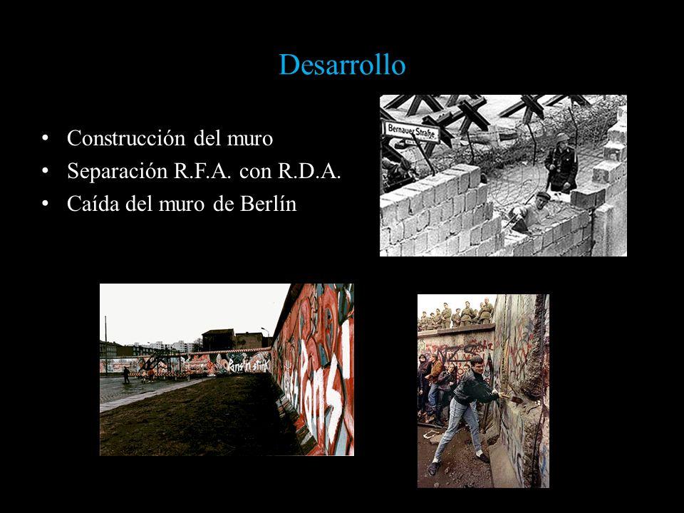 Desarrollo Construcción del muro Separación R.F.A. con R.D.A.