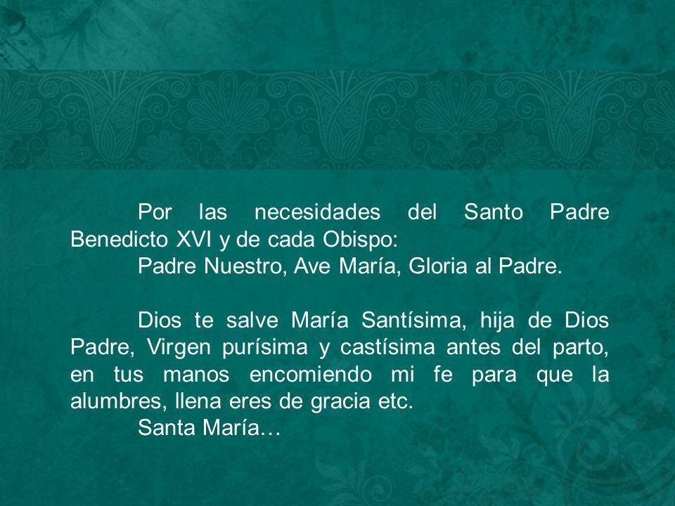 Por las necesidades del Santo Padre Benedicto XVI y de cada Obispo: