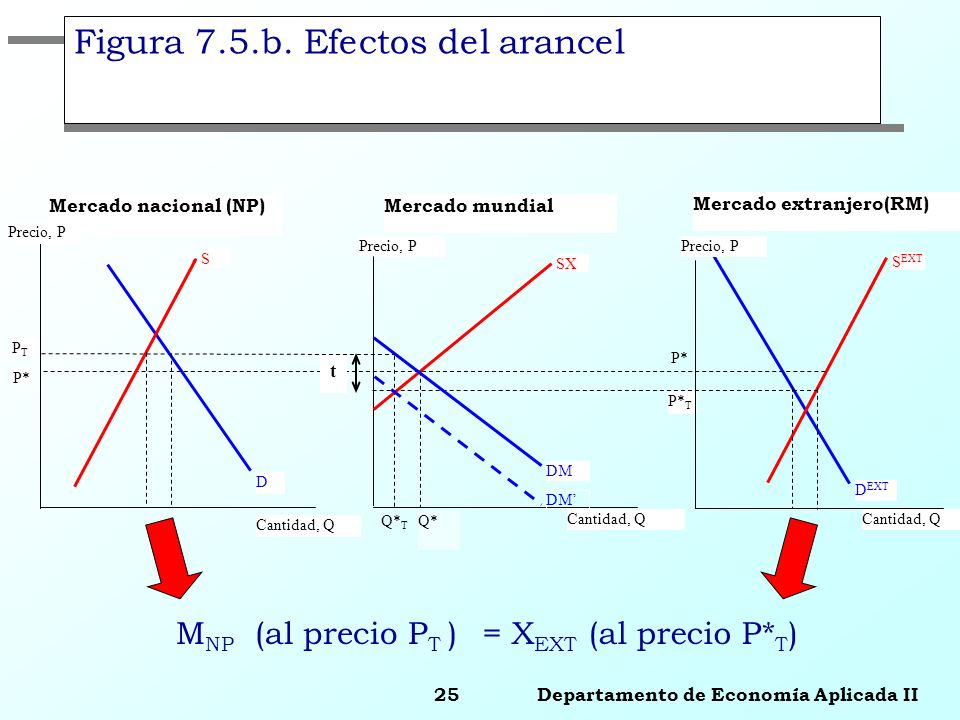 Figura 7.5.b. Efectos del arancel