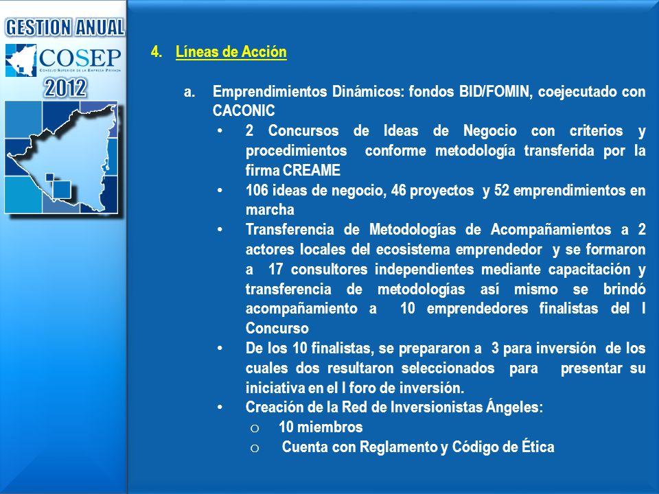 2012 GESTION ANUAL Líneas de Acción