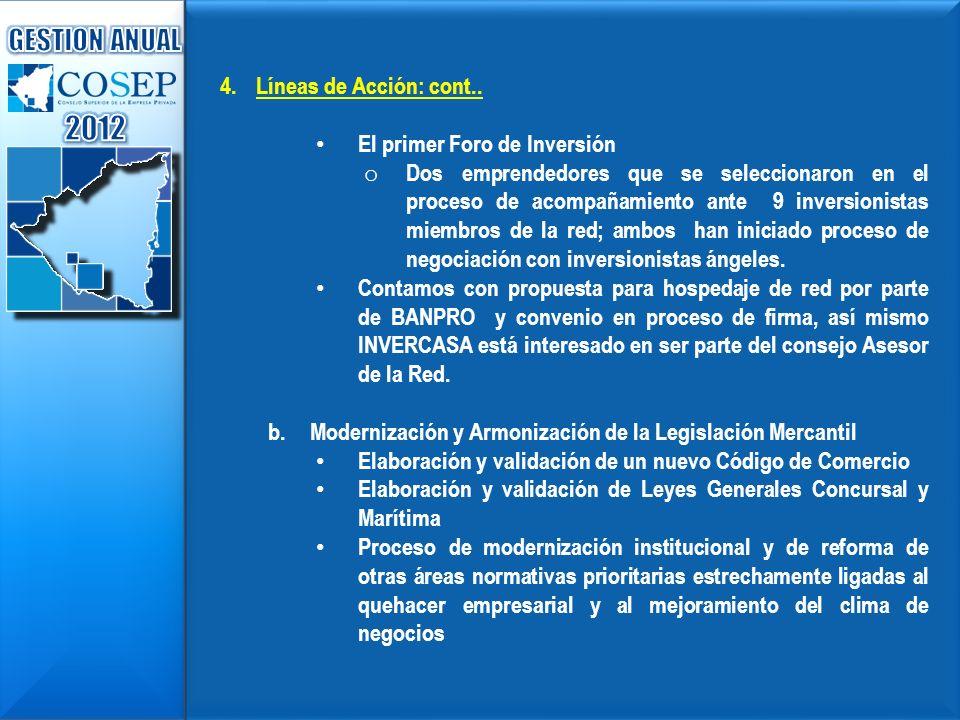 2012 GESTION ANUAL Líneas de Acción: cont..