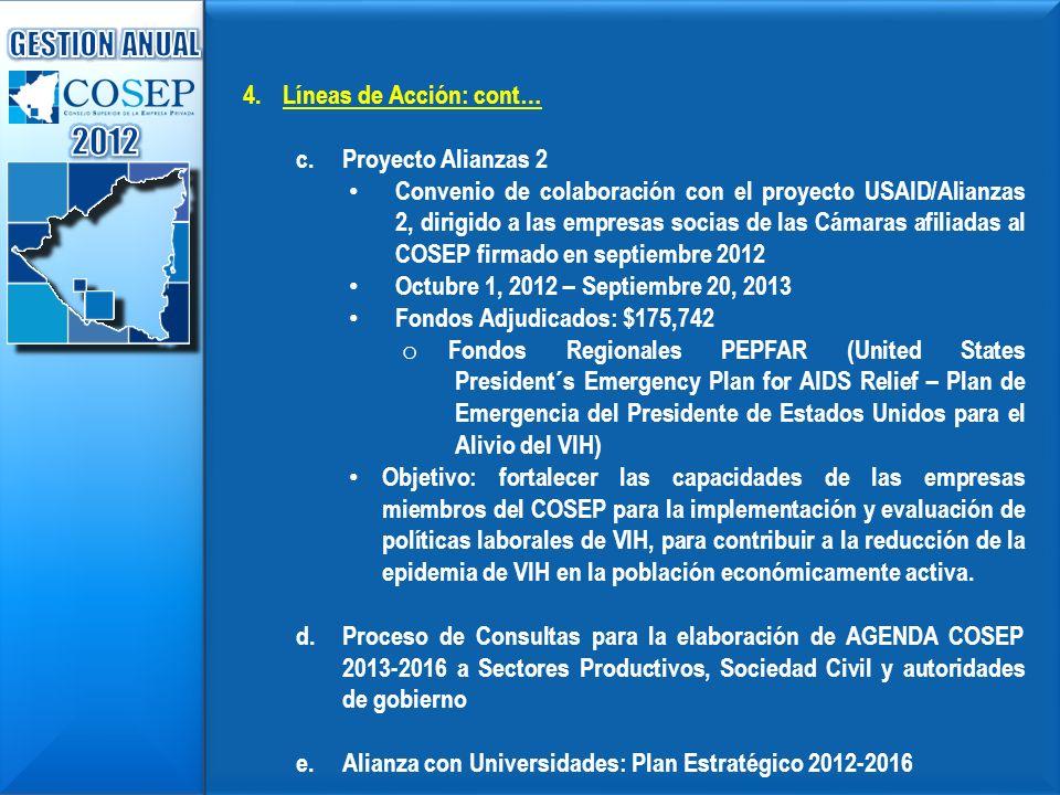 2012 GESTION ANUAL Líneas de Acción: cont… Proyecto Alianzas 2