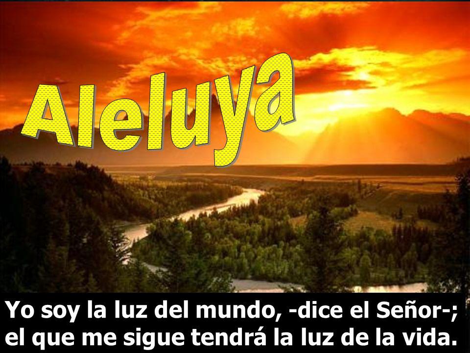 Aleluya Yo soy la luz del mundo, -dice el Señor-; el que me sigue tendrá la luz de la vida.
