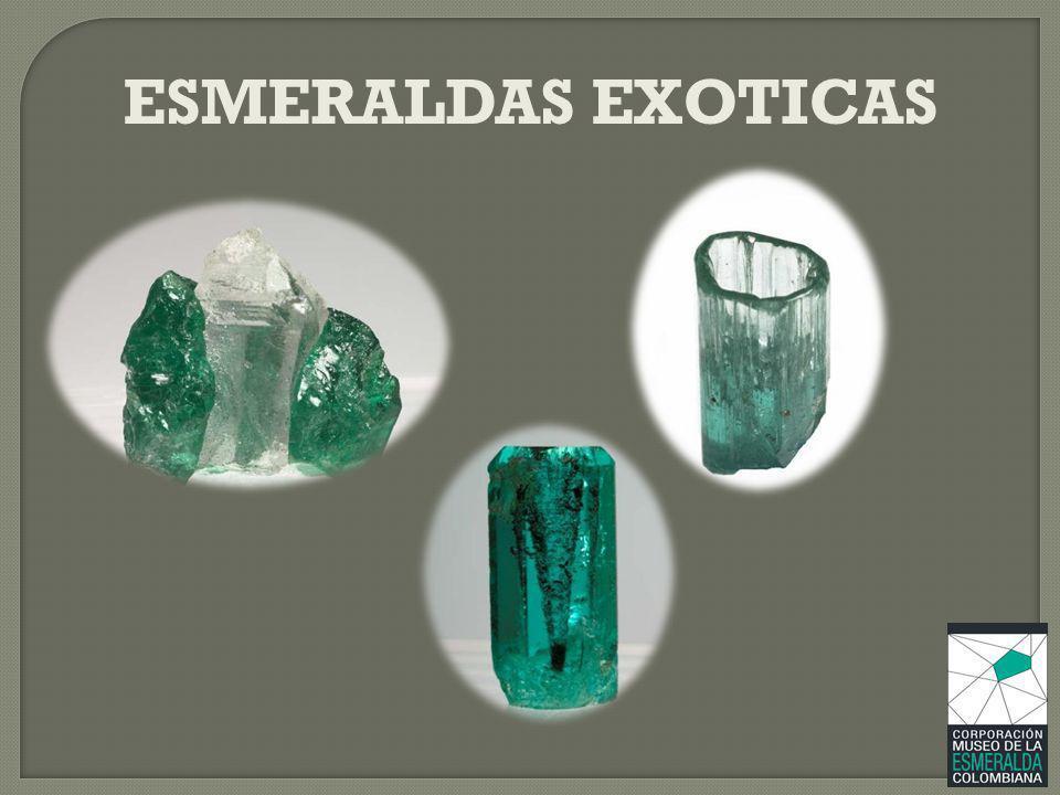ESMERALDAS EXOTICAS