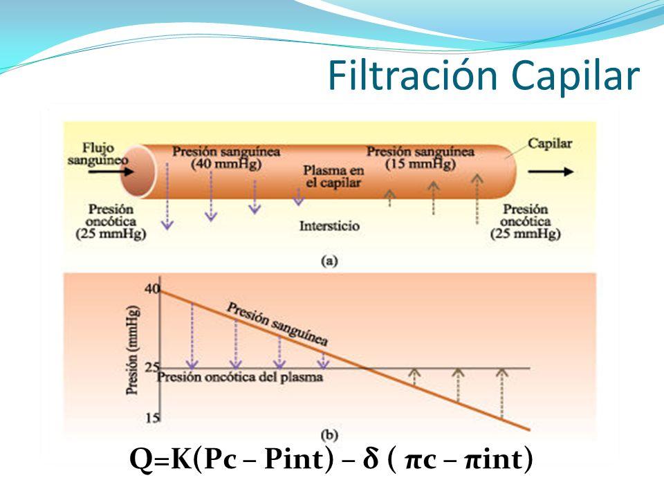 Q=K(Pc – Pint) – δ ( πc – πint)