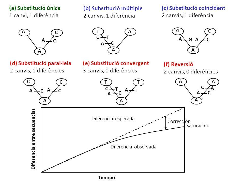 (b) Substitució múltiple 2 canvis, 1 diferència